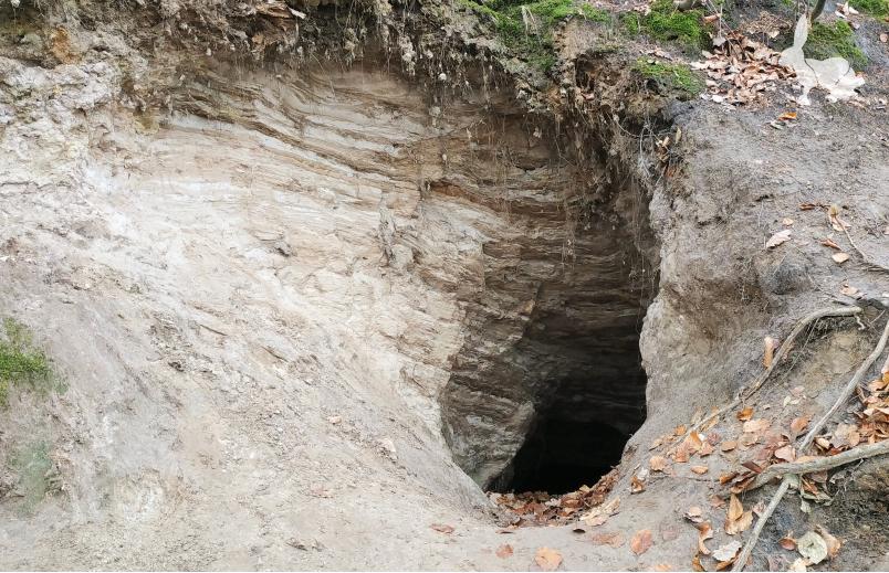 Jaskinia Goryla
